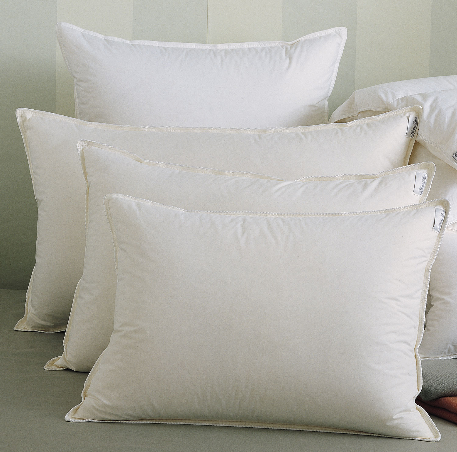 Arcadia Luxury Pillows by Sferra Fine Linens