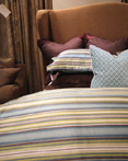 Caracus Cerulean by Daniel Stuart Bedding by Daniel Stuart Bedding
