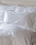 Hotel Roma by St. Geneve Luxury Bedding