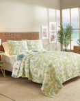 Arcadia by Vue Bedding Collection