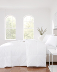 No Quill Feather Collection by Royal Court Bedding