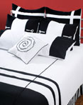 Jashmeen ''AA'' by Rizzy Home Bedding